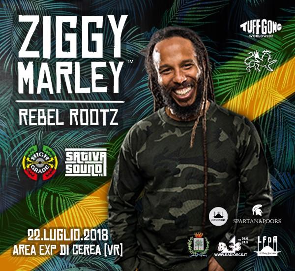 ZIGGY MARLEY - REBEL ROOTZ