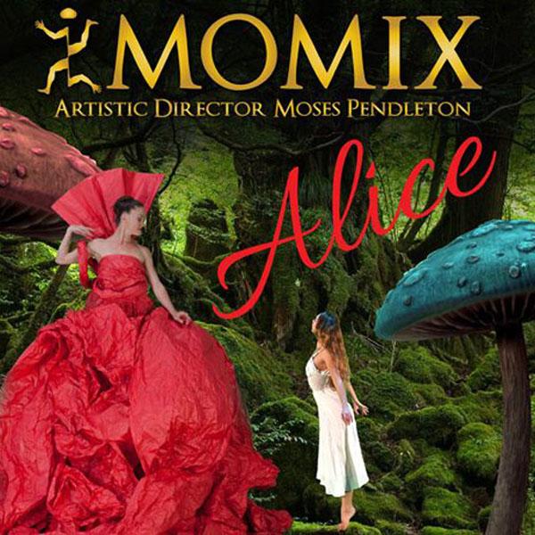 MOMIX in ALICE (nuova creazione)